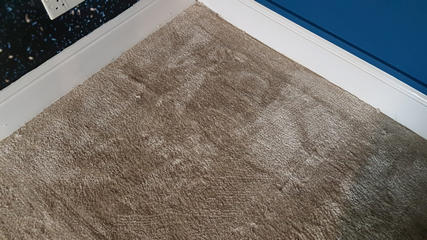 Image shows a beige carpet after blue paint stains have been removed.